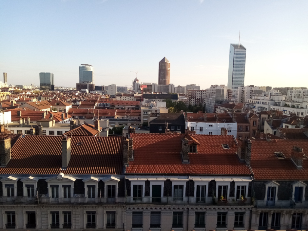 appartement-a-lyon-small-2